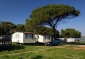 Mobile Homes MEDULIN